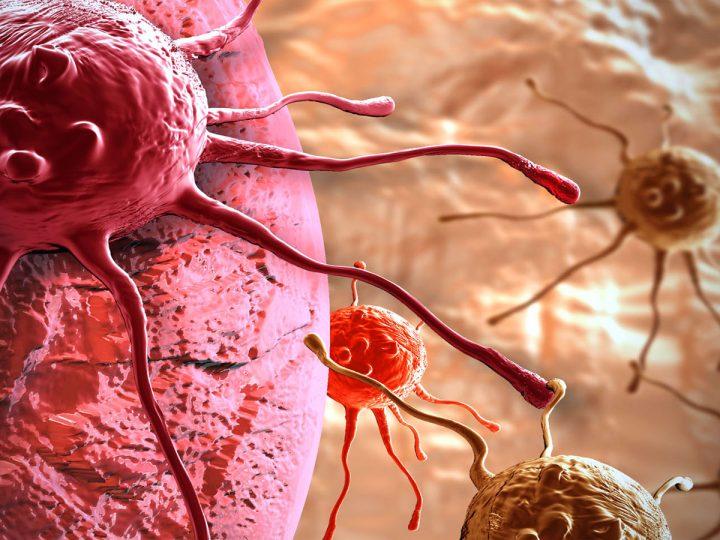 cancro-e-tumore